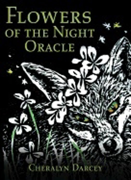 Bild på Flowers Of The Night Oracle