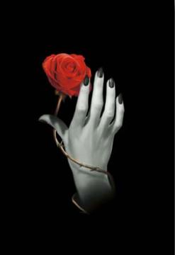 Bild på Rose Hand