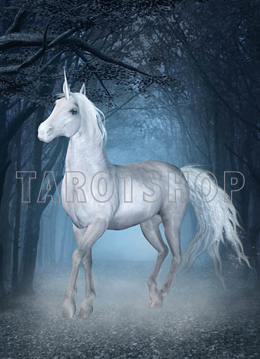 Bild på Magic Unicorn